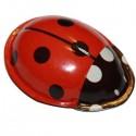 Clicking Ladybird