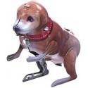 Small jumping dog